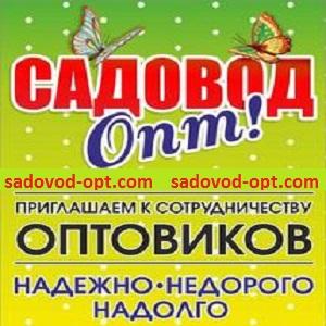 sadovod-opt.com